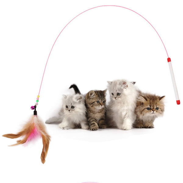Cute cat Pet toy