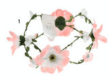 Unlimited Beauty Care Headbands 1 Flowers on Vine Headband