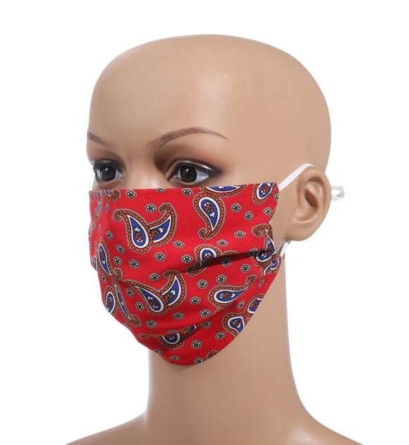 Unlimited Beauty Care Masks Protective Paisley Design Washable and Reversible Design Masks