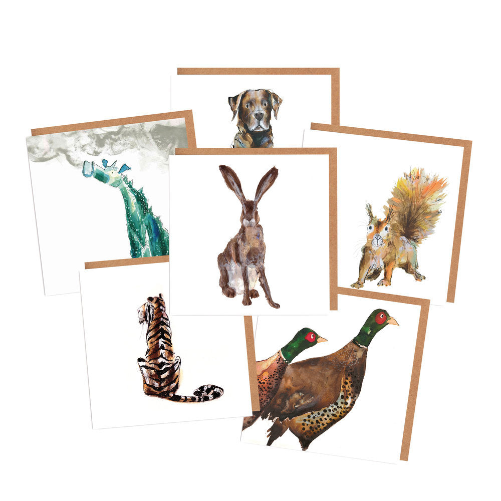collections/collection-cards.jpg