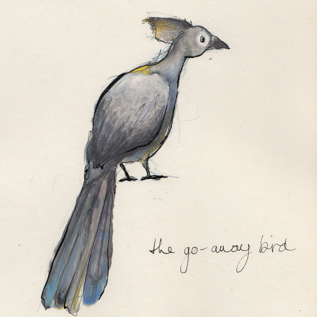 Catherine Rayner - The Go Away Bird