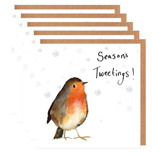 Pack of 5 Robin Charity Christmas Cards - 'Annie'