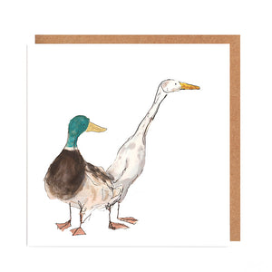 Pair of Ducks Card for all Occasions