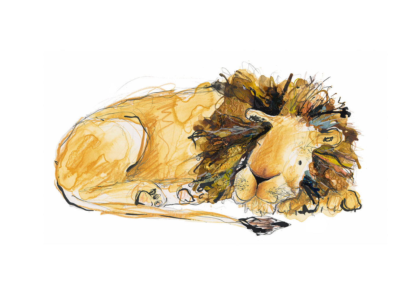 Arlo the Lion Print - 'Arlo Trying to Sleep'