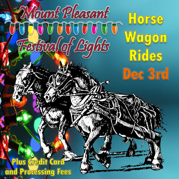Festival of Lights Horse Wagon Ride Dec 3rd