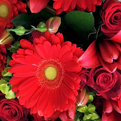 A fiery bouquet of red gerbera's, roses and lily's dressed in a romantic woven cloak of crimson will make any heart skip a beat.