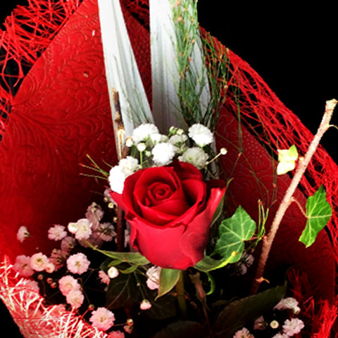 Single beautifully wrapped red rose is garnished with greenery and a light spray.