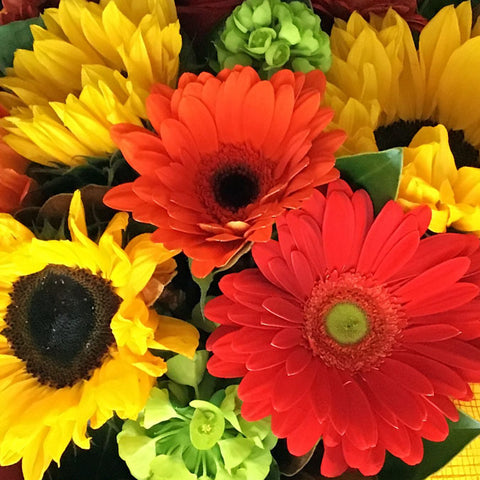 Bring the sunshine indoors with this cheerful Eco-box arrangement of gerbera's, sunflowers and roses to make any one's day a little bit brighter.