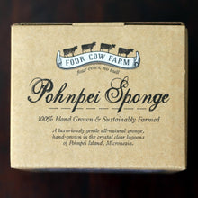 Pohnpei Sponge, Hand-Grown and Sustainably Farmed