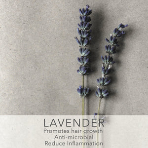 The Super Ingredient: Lavender Essential Oil 💜