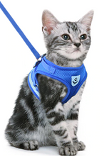 Load image into Gallery viewer, Mesh Cat Harness + Leash