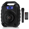 Portable Bluetooth Karaoke Sing Machine System