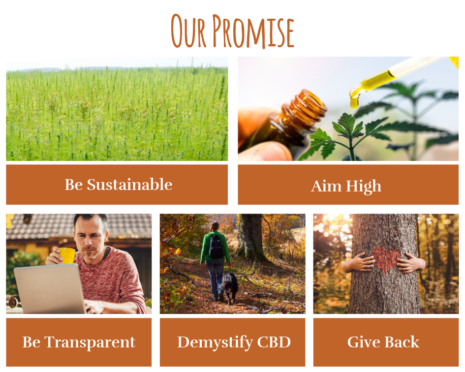 Our CBD and Promise
