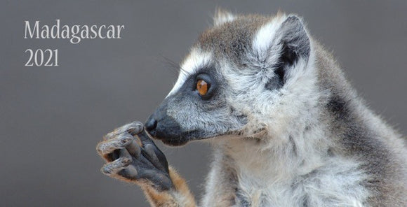 2021 Madagascar Calendar - TWO FOR ONLY $9.