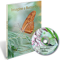 Imagine a Butterfly Book / Butterflies & Blooms DVD