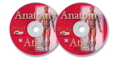 Anatomy Atlas 2 CD-ROM set