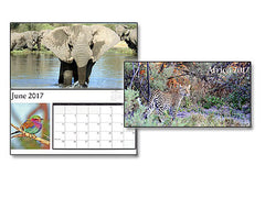 TWO FOR ONLY $9. 2017 Africa Calendars