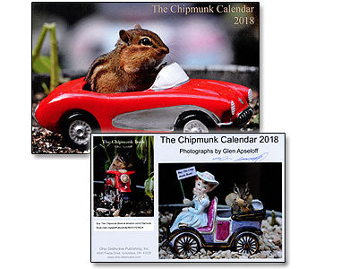 TWO FOR ONLY $8. 2018 Chipmunk Calendars