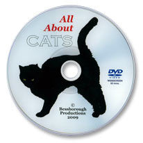 All About Cats DVD