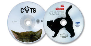 2 DVD Cat Care Library (Cats/ All About Cats)
