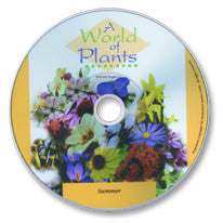 A World of Plants: Summer DVD