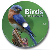 Birds of the Backyard DVD
