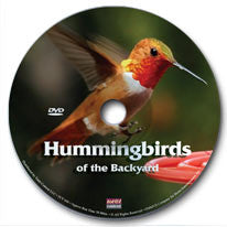 Hummingbirds of the Backyard DVD