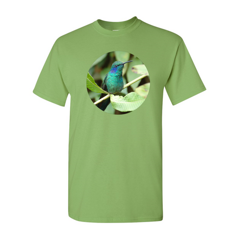 Hummingbird2 T-Shirt