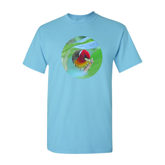 Red Headed Barbet T-Shirt