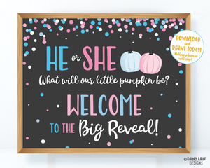 Pumpkin Gender Reveal Welcome to the Big Reveal Sign, Fall Gender Reveal Welcome Sign, Gender Reveal Sign, Reveal Poster, Pink pumpkins blue