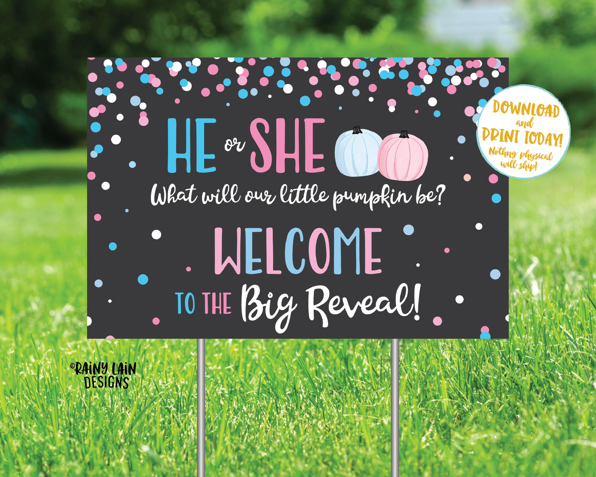 Pumpkin Gender Reveal Yard Sign Welcome to the Big Reveal Sign, Fall Gender Reveal Welcome Sign, Gender Reveal Sign, Pink pumpkins blue