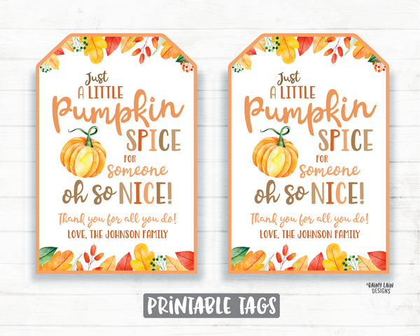 Pumpkin Spice for Someone Nice, Pumpkin Gift Tag, Homemade Pumpkin, Pumpkin Spice Tags, Teacher Coach Co-Worker Friend Neighbor Gift Favor