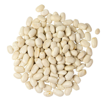 Cannellini Beans - Organic - 25lb (LOCAL ONLY)