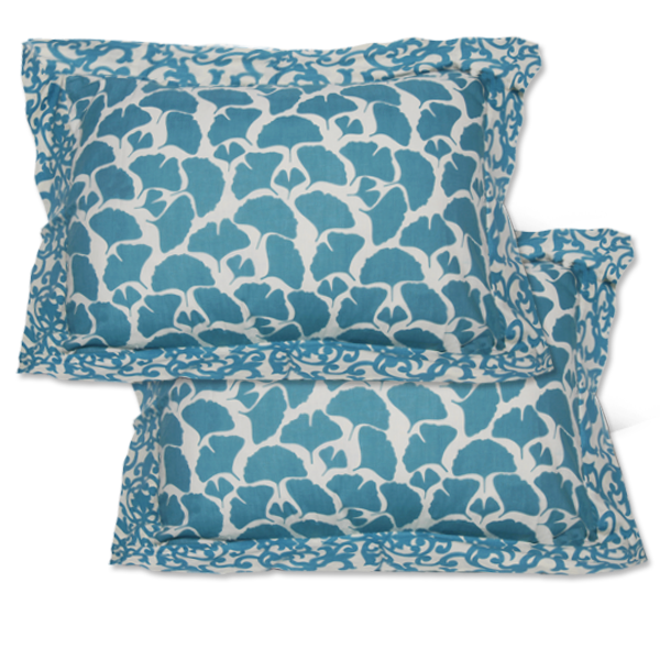 Teal Framed Pillow Shams