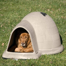 Load image into Gallery viewer, PETMATE INDIGO DOG HOUSE WITH MICROBAN, LARGE 50- 90 LBS REDUCED PRICE