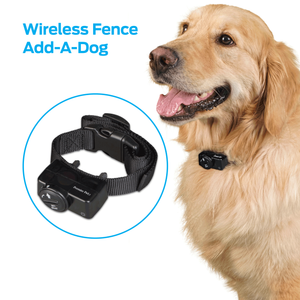 PREMIER PET WIRELESS ADD-A-DOG COLLAR - ADDITIONAL OR REPLACEMENT COLLAR