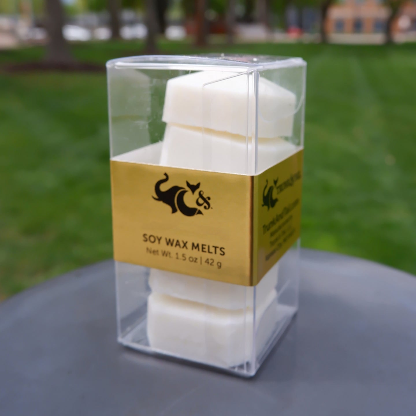 Thunderstorm—Soy Wax Melts