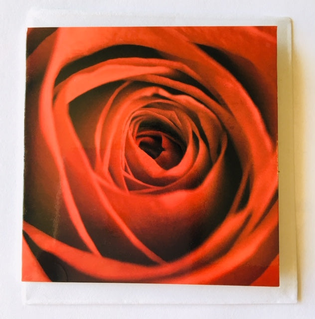 Red Rose message card
