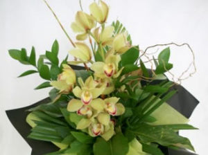 Cymbidium Orchid Bouquet / Seasonal Winter