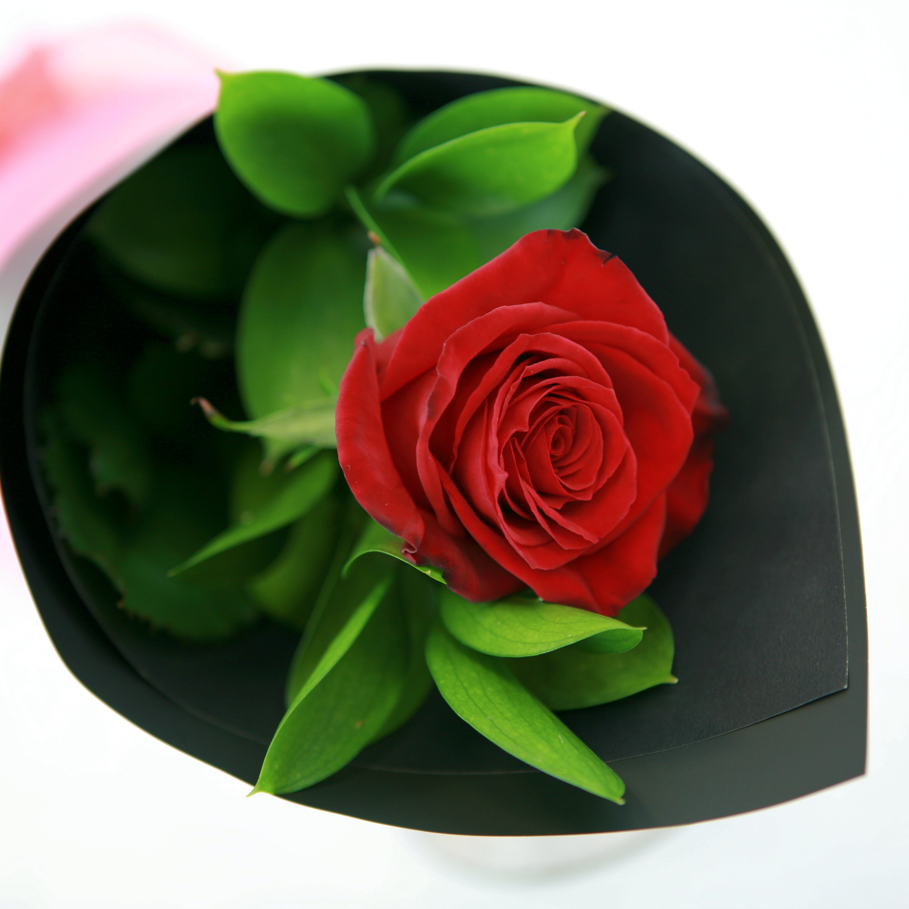 Valentines Day Single Red Rose