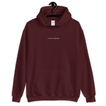 Load image into Gallery viewer, Current Situation Stitched Hoodie