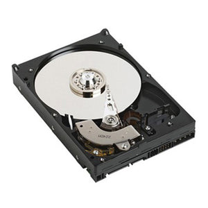 DELL 1TB SATA 1000 GB Serial ATA - TechExpress