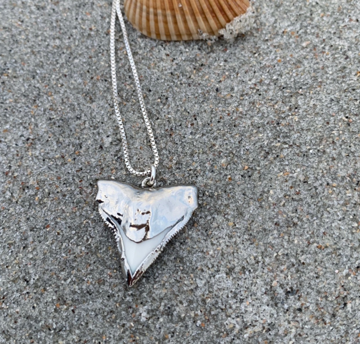 993- Shark Tooth Necklace