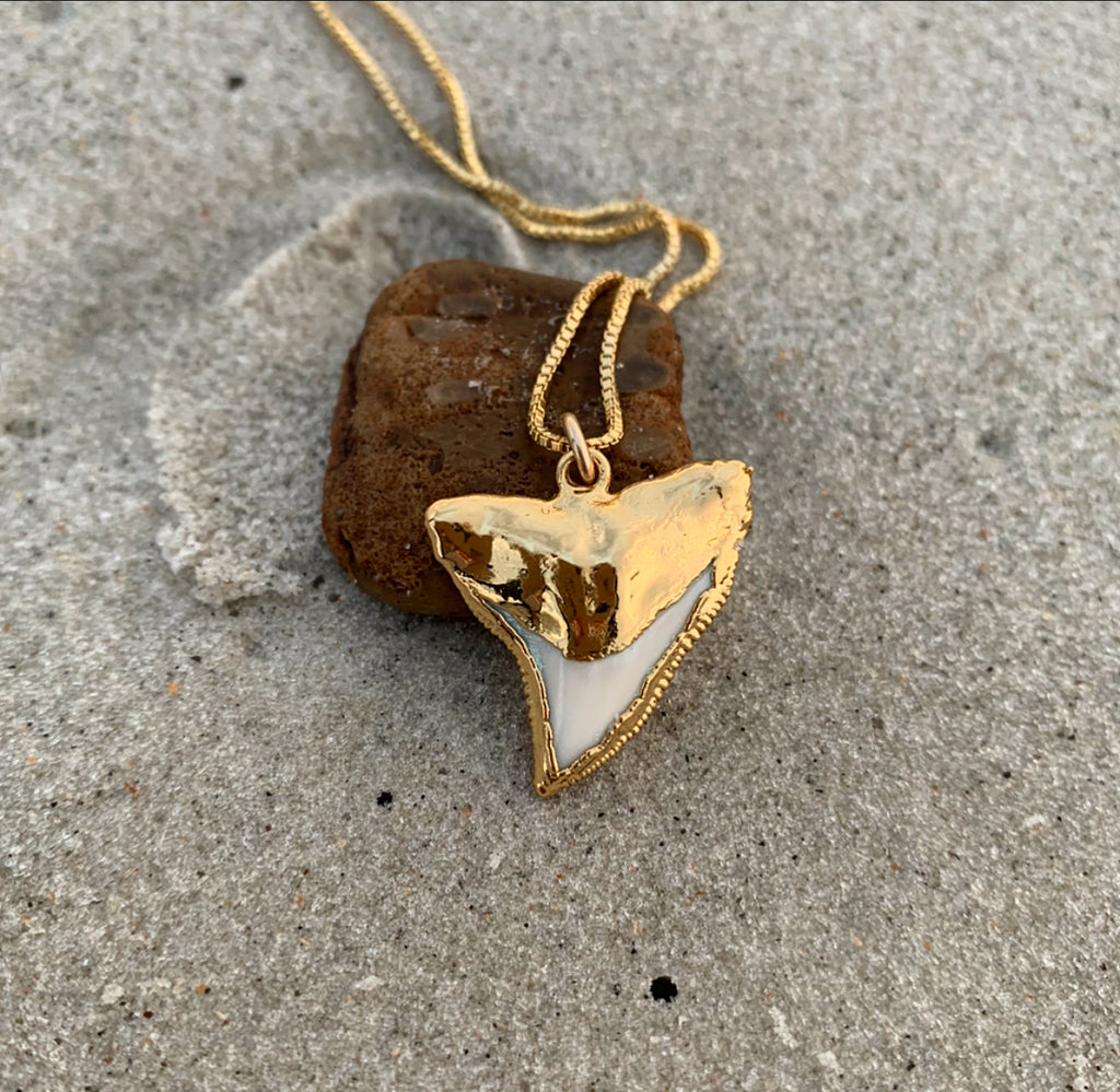 992 - Shark Tooth Necklace