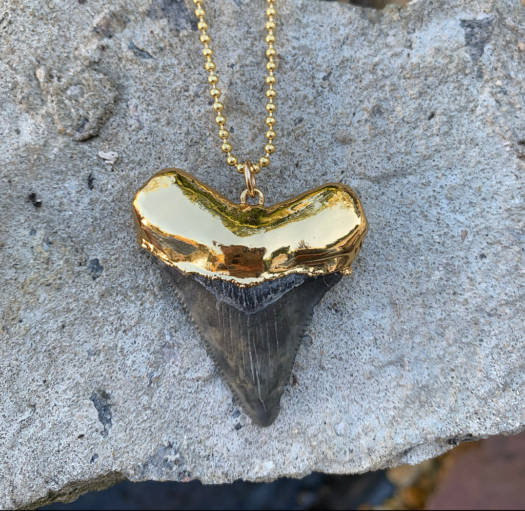 990-Shark Tooth Necklace