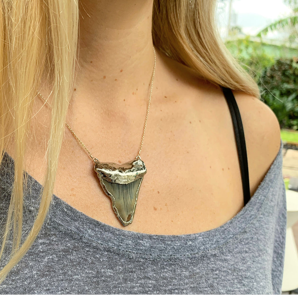 910-Shark Tooth Necklace