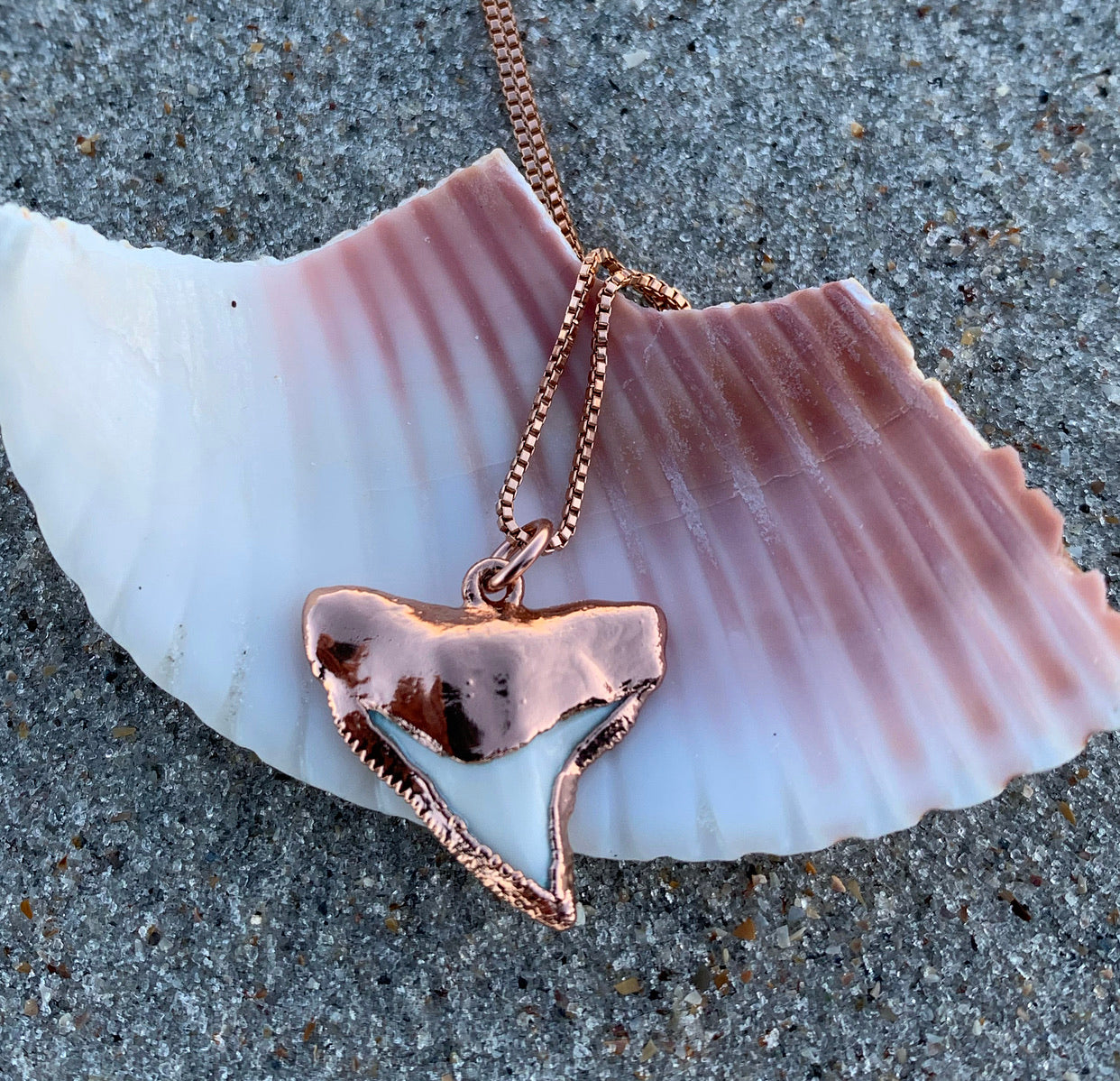 984  - Rose Gold Shark Tooth Necklace