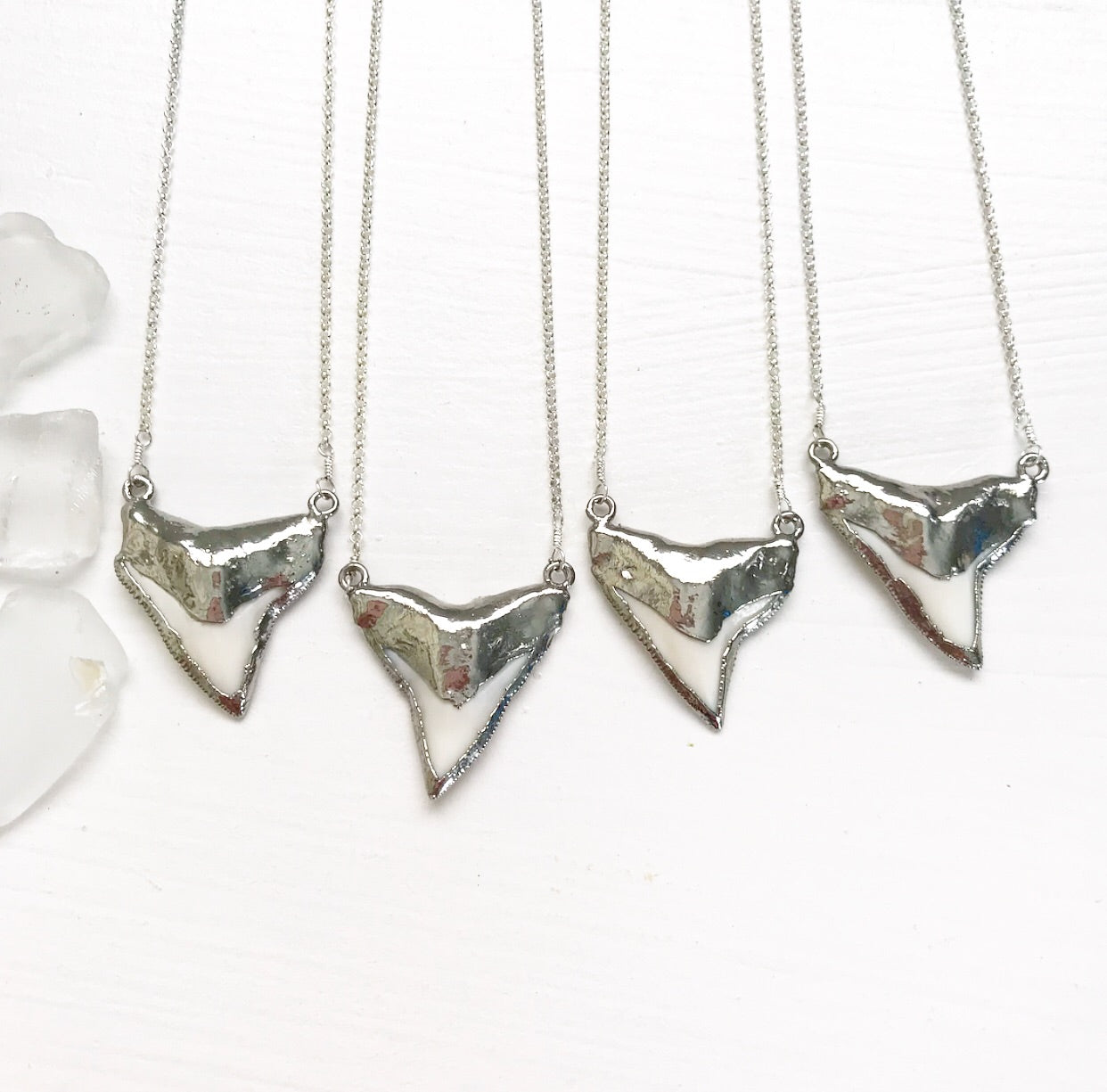 586-Shark Tooth Necklace