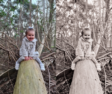 Load image into Gallery viewer, Noah & Sisi preset pack - Soft Sepia