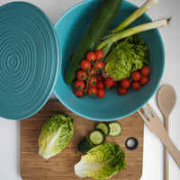 Blue ribbed contemporary salad bowl made from recycled plastic.  Filled with a selection of unchopped salad vegetables.